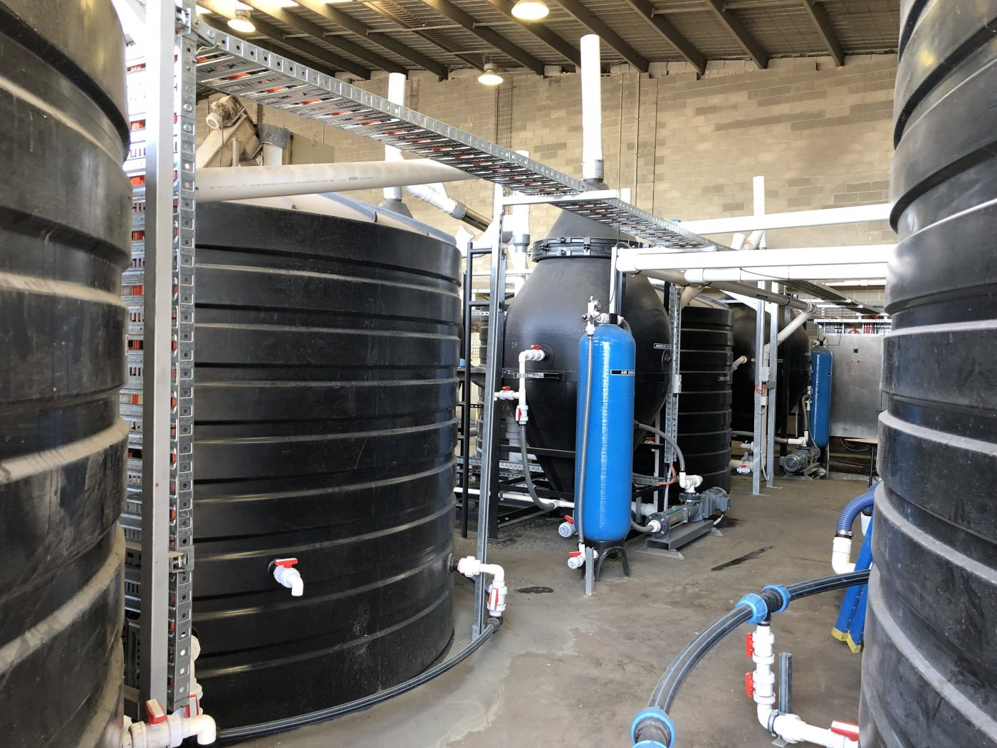 Polymer Processors Plastics Recycling Wastewater Treatment