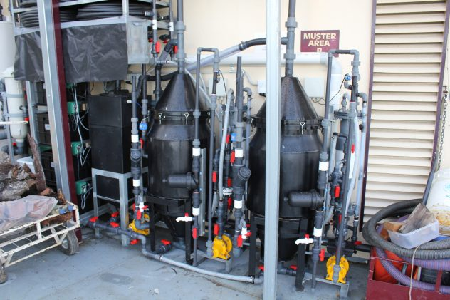 Murray Princess Greywater Treatment dissolved air flotation