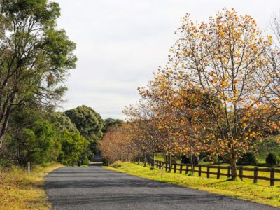 Southern Highlands of NSW